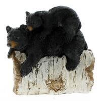 Black Bear with Cub On Log