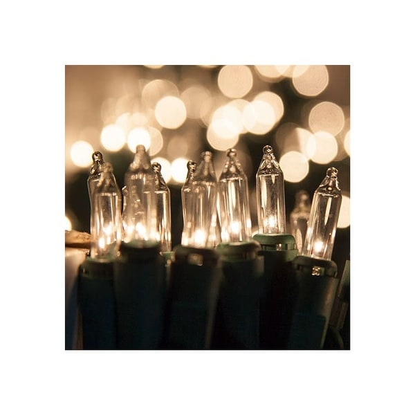 """Wintergreen Lighting 15188 10.7' Long Indoor Standard 50 Mini Light Holiday Light Strand with 2.5"""" Spacing and Green Wire"""