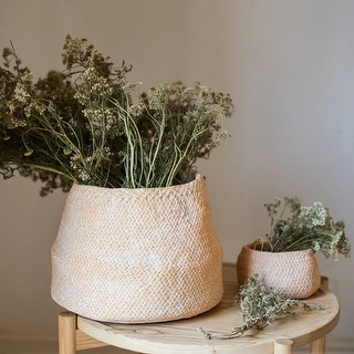 RusticReach Cement Weaving Pattern Plants Container or Planter