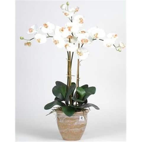Nearly Natural 1017-CR Triple Stem Phalaenopsis Silk Orchid Arrangement