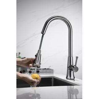Link to Single Handle Pull-out Kitchen Faucet with Deck Plate Brushed Nickel Similar Items in Faucets