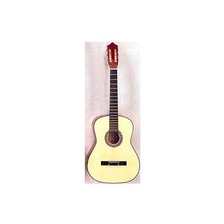 6 string acoustic guitar