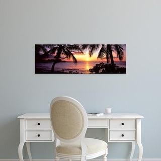 Easy Art Prints Panoramic Images's 'Palm trees on the coast, Kohala Coast, Big Island, Hawaii, USA' Premium Canvas Art