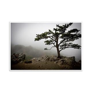 Foggy Tree - Blue Ridge Parkway, Virginia  - Capturing America - 24x16 Matte Poster Print Wall Art