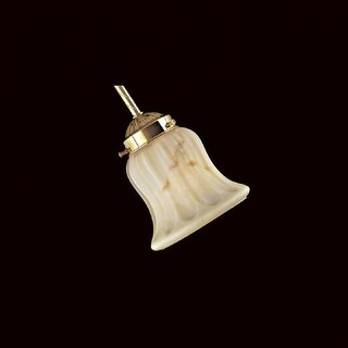 Minka Lavery 2578 Etched Veined Shade