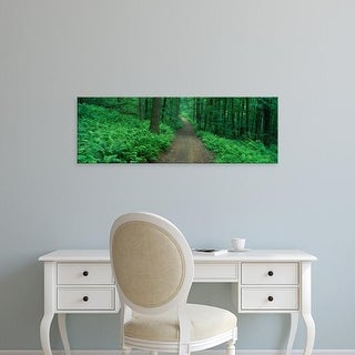 Easy Art Prints Panoramic Images's 'Path in Woods Delaware County NY USA' Premium Canvas Art