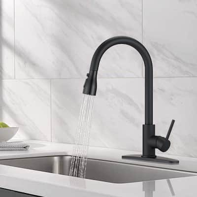 Kitchen Sink Faucets with Pull Down Sprayer Matte Brushed Finished