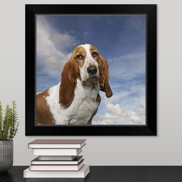 """Basset Hound Portait"" Black Framed Print"