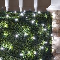 Wintergreen Lighting 72522 100 Bulb 4Ft x 6 Ft LED Decorative Holiday Net Light with Green Wire - Cool White - N/A