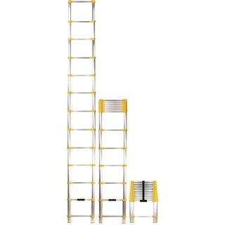 Xtend+Climb Xtend & Climb Ladder
