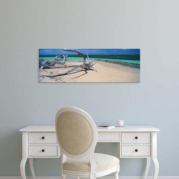 Easy Art Prints Panoramic Image 'Driftwood, Beach, Green Island, Great Barrier Reef, Queensland, Australia' Canvas Art
