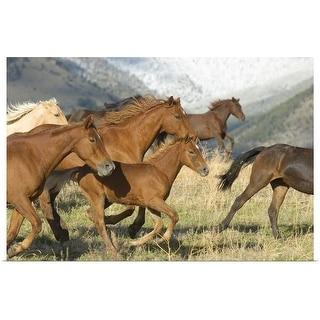 """Horses running"" Poster Print"