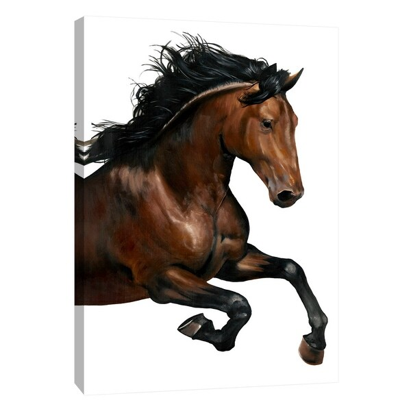 "PTM Images 9-101688 PTM Canvas Collection 10"" x 8"" - ""Brown Horse"" Giclee Horses Art Print on Canvas"