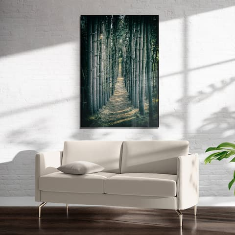 WOODED FOREST PATH Art on Acrylic by Kavka Designs