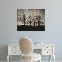 Easy Art Prints Keri Bevan's 'Park Trees' Premium Canvas Art