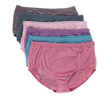 Fruit of the Loom Women's Plus Size Beyond Soft Brief Underwear ( 6 Pack)