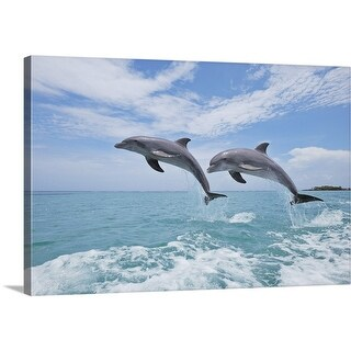 Premium Thick-Wrap Canvas entitled Common Bottlenose Dolphins Jumping in Air, Caribbean Sea, Roatan, Bay Islands, - Multi-color