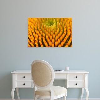 Easy Art Prints Adam Jones's 'Pattern In Coneflower' Premium Canvas Art