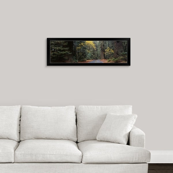 """""""Road Redwood National Forest CA"""" Black Framed Print"""