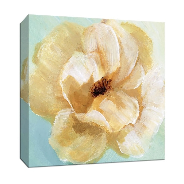 """PTM Images 9-147880 PTM Canvas Collection 12"""" x 12"""" - """"Soft Sunday II"""" Giclee Flowers Art Print on Canvas"""