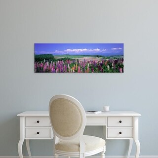 Easy Art Prints Panoramic Images's 'Lupines Hokkaido Japan' Premium Canvas Art