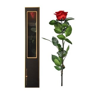 Real Preserved Rose In A Luxury Gift Box, Last Up To A Year