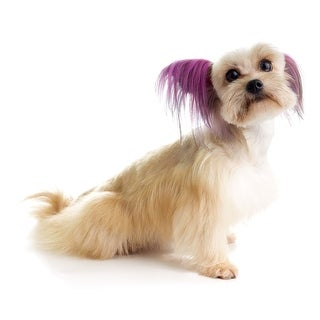 Top Performance Dog Hair Dye Gels - Glamour Gold