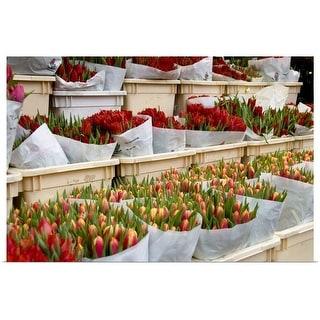 """Tulip bouquets"" Poster Print"
