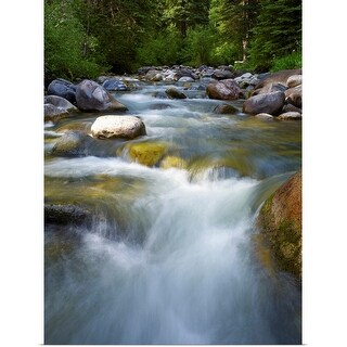 """""""Colorado, River flowing through forest"""" Poster Print"""