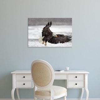 Easy Art Prints Jaynes Gallery's 'Bald Eagle In Snowstorm' Premium Canvas Art