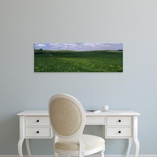 Easy Art Prints Panoramic Images's 'Wildflowers in a meadow' Premium Canvas Art