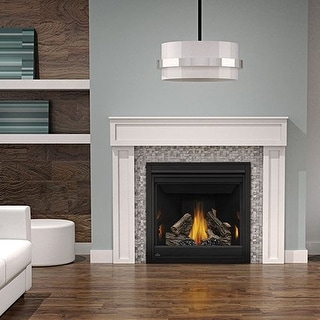 Napoleon B36TRE 18000 BTU Built-In Direct Vent Natural Gas Fireplace with Safety Barrier and Electronic Ignition from the Ascent