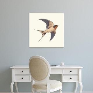 Easy Art Prints Terry Fan's 'Barn Swallow' Premium Canvas Art