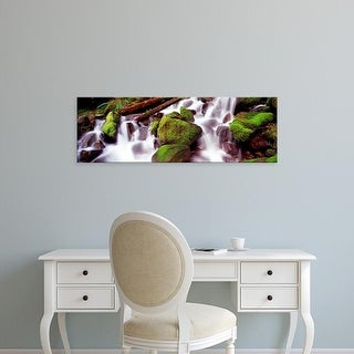 Easy Art Prints Panoramic Image 'Cascading waterfall in a rainforest, Olympic National Park, Washington ' Canvas Art