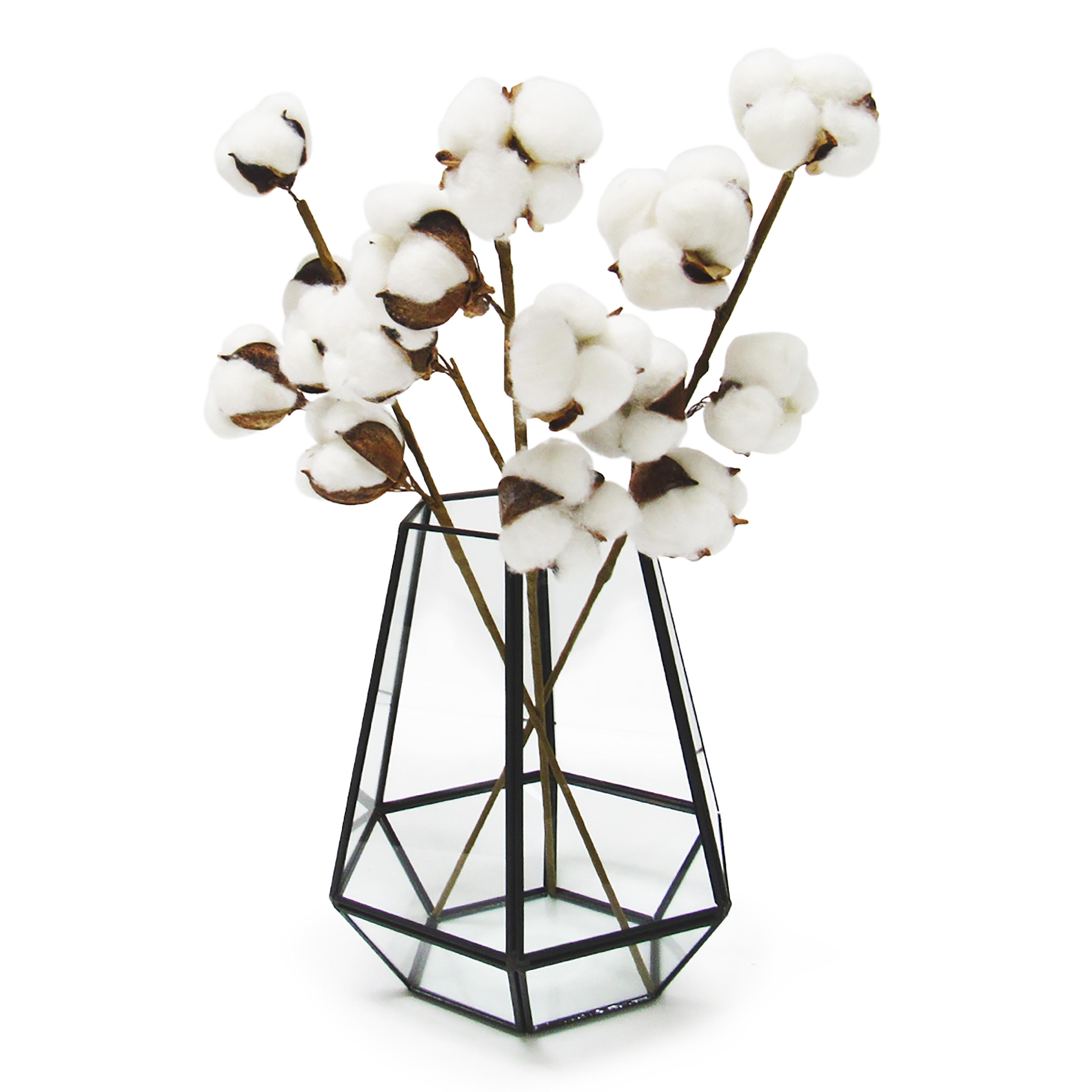 Set Of 3 Cotton Stem Branch 16in 16 L X 4 W X 2 Dp Overstock 32053735