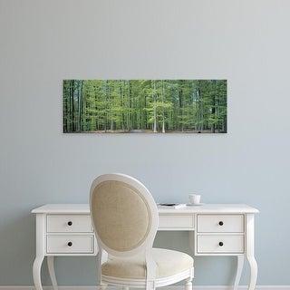 Easy Art Prints Panoramic Images's 'Bruxelles Belgium' Premium Canvas Art
