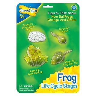 (2 Ea) Frog Life Cycle Stages