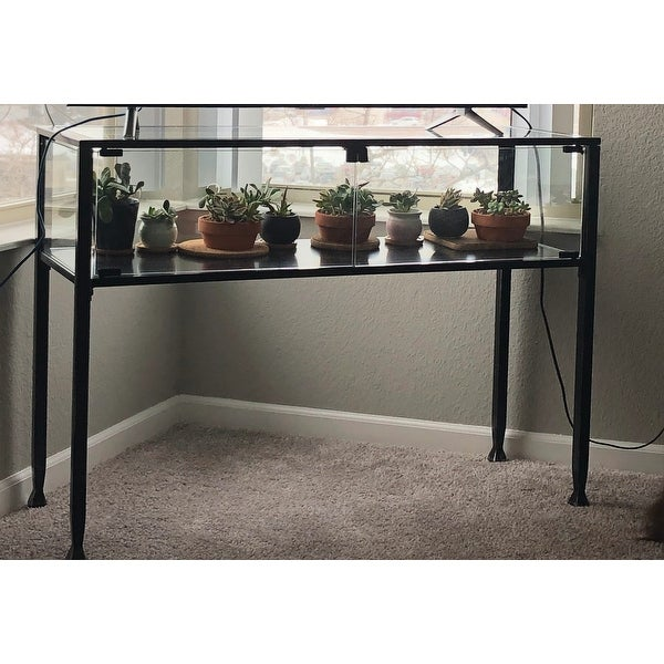 Shop Carbon Loft Glenn Black Metal Display/ Terrarium