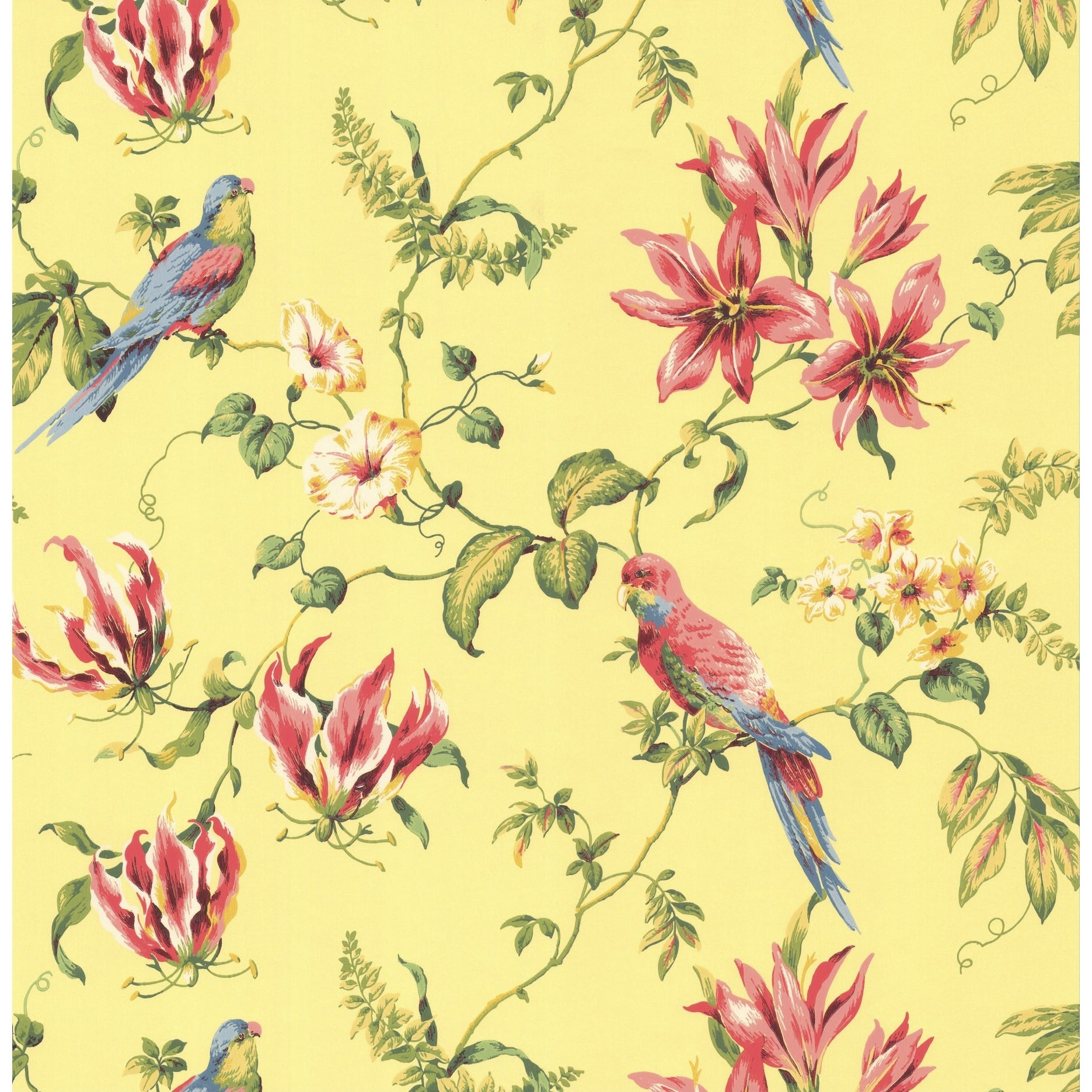 Shop York Wallcoverings Cj2800 Orange And Yellow Book Birds