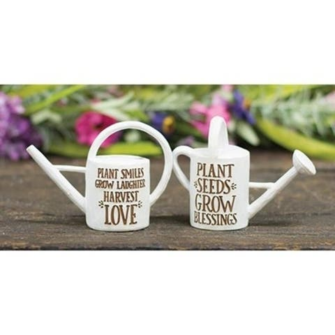 Set of 2 Decorative Resin Watering Cans
