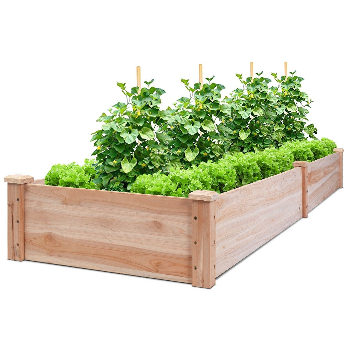 03bb5dda9 Buy Planters   Plant Stands Online at Overstock