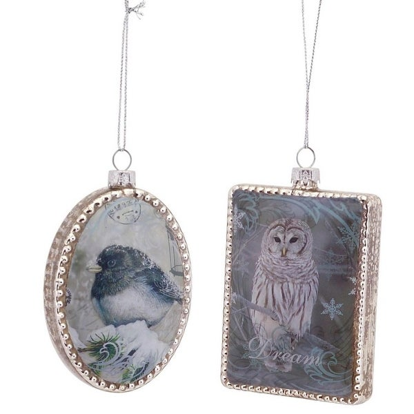 Pack of 12 Scenic Bird and Owl Illustration Glass Christmas Ornaments 3.5""