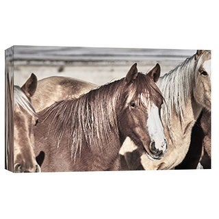 """PTM Images 9-101862  PTM Canvas Collection 8"""" x 10"""" - """"Horse Fort Ranch 10"""" Giclee Horses Art Print on Canvas"""