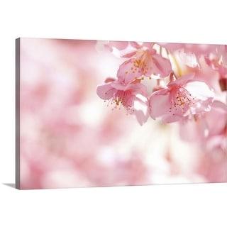 """Kawazu cherry blossom."" Canvas Wall Art"