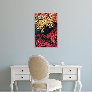 Easy Art Prints William Sutton's 'Maple Trees In Autumn Color' Premium Canvas Art