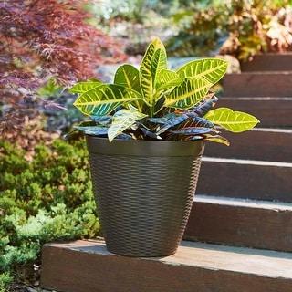"Link to 15"" Jamaica Wicker Planter, Dark Coffee Similar Items in Outdoor Decor"