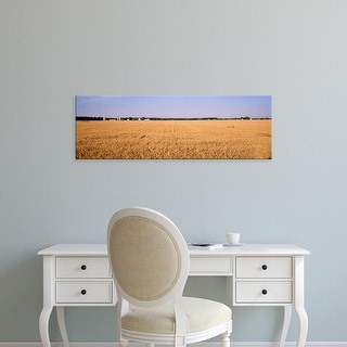 Easy Art Prints Panoramic Images's 'Wheat crops in a field, Marion County, Illinois, USA' Premium Canvas Art