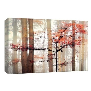 """PTM Images 9-148093  PTM Canvas Collection 8"""" x 10"""" - """"Orange Awakening"""" Giclee Forests Art Print on Canvas"""