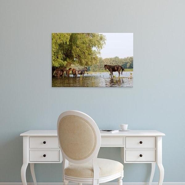 Easy Art Prints Martin Zwick's 'The Free Roaming Horses Of Maliuc' Premium Canvas Art