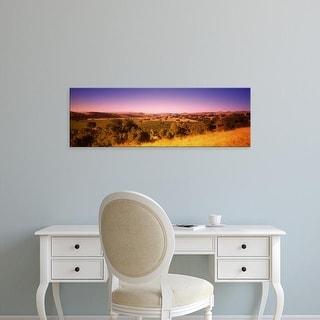 Easy Art Prints Panoramic Image 'Firestone Vineyard, Los Olivos, Santa Ynez, Santa Barbara, California' Canvas Art